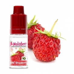 Wild Strawberry - MolinBerry